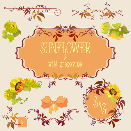 grapevine: Template and border elements set with sunflower and grapevine. Hand drawn vector line