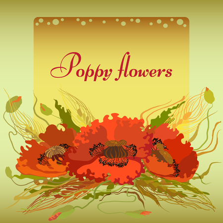green wheat: Vector green and yellow frame with red poppy flowers and spike lets of wheat. Greeting card
