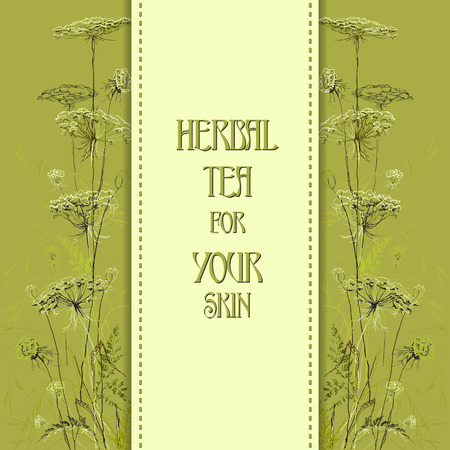 herbal cosmetics: Green border hand drawn sketch herbs. Vertical design background. Herbal tea for your skin.