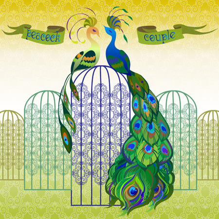 backgrounds texture: Beautiful couple peacocks in the birdcage. Ribbon with text. Yellow and green design.  Vector illustration. Illustration
