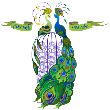 backgrounds texture: Beautiful couple peacocks in the birdcage. Ribbon with text. Blue and green design. Isolated on white background. Vector illustration. Illustration