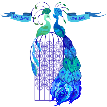 birdcage: Beautiful couple peacocks in the birdcage. Ribbon with text. Blue design. Isolated on white background. Vector illustration. Illustration