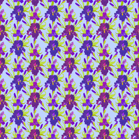 purple iris: Floral seamless pattern. Lilac, violet, purple iris flower background.  Illustration