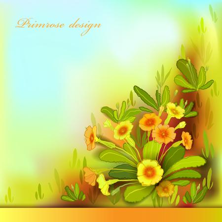 bouquet fleur: fleurs de printemps d'�t�. Jaune fond floral orange. border frame horizontal avec primev�res jaunes et feuilles vertes. For�t ou prairie croquis. Ensoleill� ambre fond d'aquarelle. Vector illustration