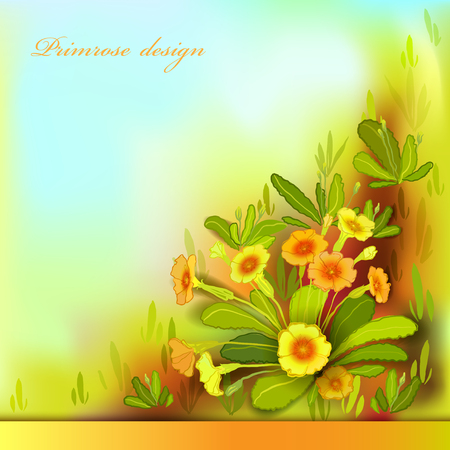 Spring summer flowers. Yellow orange floral background.  Horizontal border frame with yellow primroses and green leaves. Forest or meadow sketch. Sunny amber watercolor background. Vector illustration Illustration