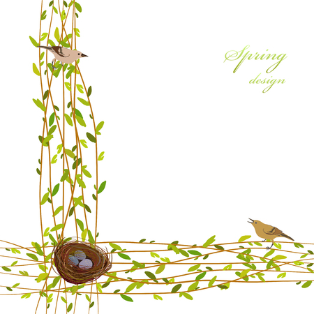 twigs: Spring background with willow tree branches, nest, birds and eggs. Border frame with osier twigs and green leaves on white background isolated. Green tree twigs border design.Vector illustration.