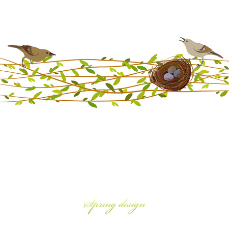 Spring background with willow tree branches, nest, birds and eggs. Horizontal border with osier twigs and green leaves  white background isolated. Green tree twigs frame design Vector illustration Illustration