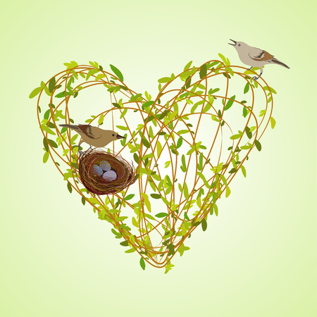 willow tree: Love card. Spring heart shape design with willow tree branches, nest, birds and eggs. Love post card design on light green background. Spring love heart vector illustration.