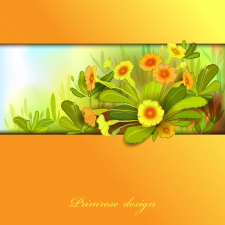 Spring summer flowers. Yellow orange floral background. Horizontal border frame with yellow primroses and green leaves. Forest or meadow sketch. Sunny amber watercolor background. Vector illustration.
