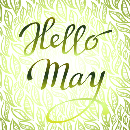 may: Hand drawn inspirational quote - hello May. Pen and ink calligraphy. Brush painted green letters on spring light green yellow abstract leaves pattern background. Callygraphy card. Vector illustration