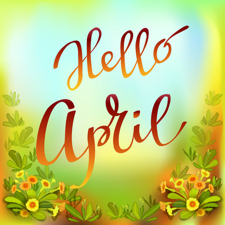 hello: Hand drawn spring inspirational quote - hello April. Pen and ink calligraphy. Brush painted red letters on yellow green primroses background. Spring botanical greeting card. Vector illustration.