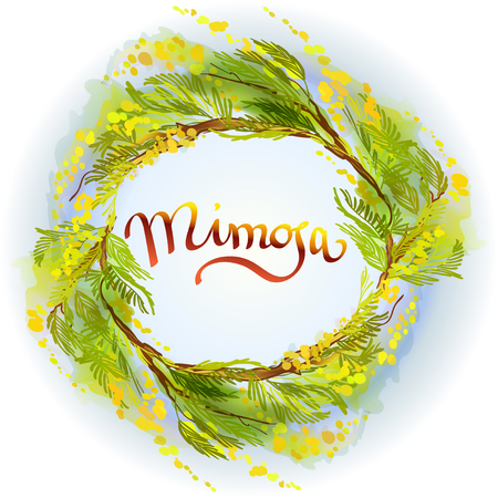 wattle: Yellow green mimosa or acacia spring flowers wreath on white blue background. Hand drawn floral yellow round border frame and text mimosa. Sunny watercolor sketch background. Vector illustration.