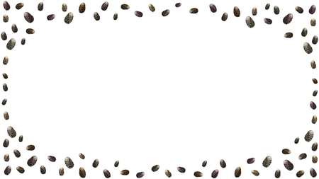 Chia seeds seamless border. Background for package design or organic food or yogurt. Vector illustration stock vector. Stock Vector - 110196320