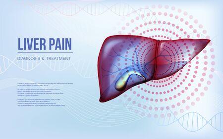 Realistic liver and gallbladder baner concept Ilustração