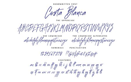 Handwritten script font vector alphabet Costa Blanca set