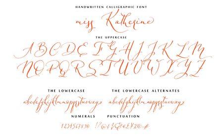 Hand drawn callygraphic font vector alphabet set