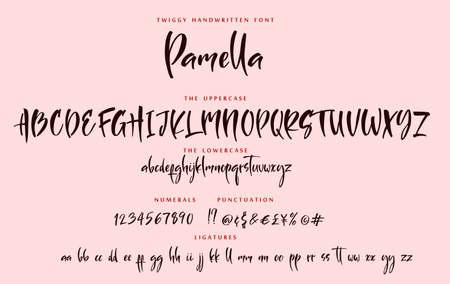Handwritten script playful font sister Pamella vector alphabet set