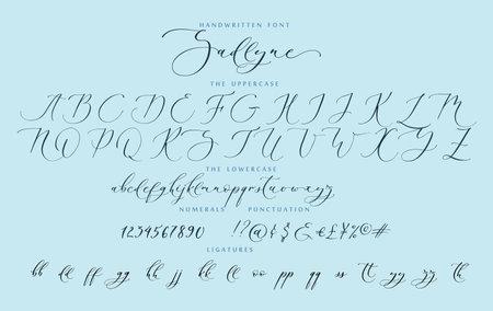 Handwritten script cursive calligraphy playful font vector alphabet set Ilustração