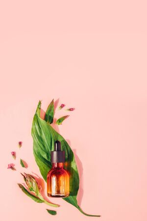 Bottle with natural serum with vitamins on a pink background. Cosmetic procedures for the face Reklamní fotografie - 124787604