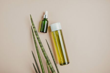 Organic, natural cosmetics. Natural shampoo, tonic, serum for hair and skin. Flat lay, minimalism, pastel Reklamní fotografie