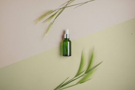 Natural serum, oil for hair and skin care. Concept of treating hair for dryness and brittleness. Flat lay, pastel