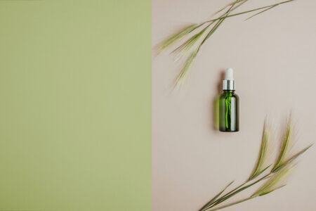 Natural cosmetics, serum for hair and skin care. The concept of organic, natural cosmetics. Flat lay, minimalism, pastel