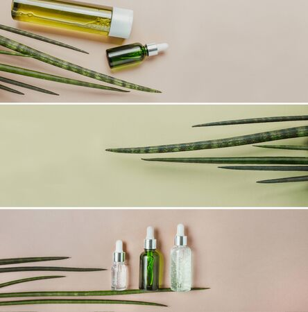 Organic, natural cosmetics, serum for hair care. Flat lay, pastel. Collection photo banner