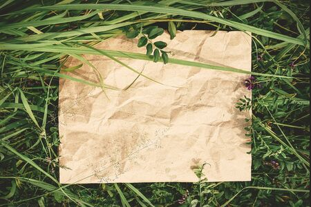 Creative background from craft paper in green natural grass. Concept of ecological products, nature