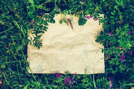 Creative background from craft paper in green natural grass. The concept of ecological products, nature