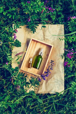 Organic Spa Cosmetic With Herbal Ingredients for skin. Serum in a transparent glass bottle on plant background Reklamní fotografie