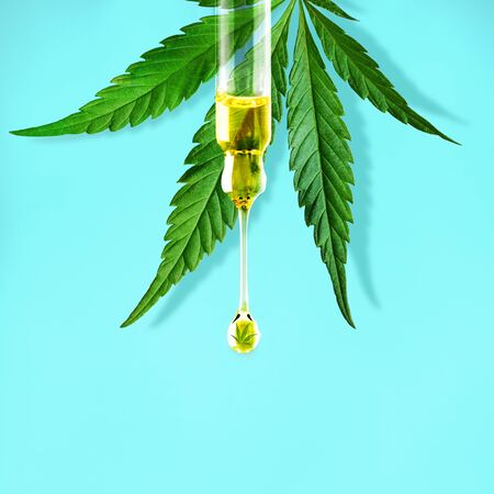 Cannabis leaf and a dropper with drop of CBD OIL close-up on blue background. Macro. Minimal concept Zdjęcie Seryjne
