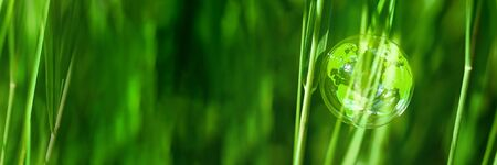 Soap bubble on a blade of grass with reflection of the earth globe. Earth day concept. Protect the fragile world. Copy space.