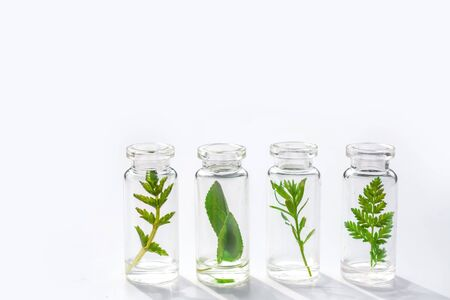 Medical herbs and plants in laboratory glass bottles on a white background. Concept of natural bio cosmetics and natural skin care