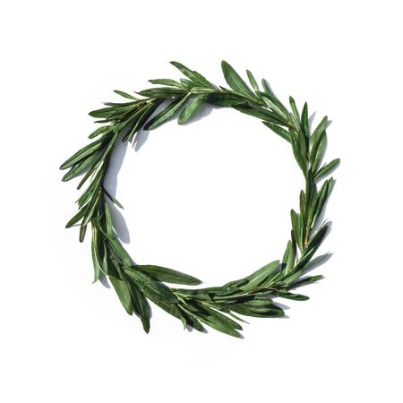 Round frame of green leaves on a white background. Close-up, tropical pattern, organic texture Banque d'images