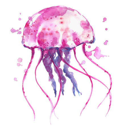 Watercolor jellyfish.