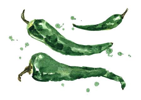 Watercolor green pepper.