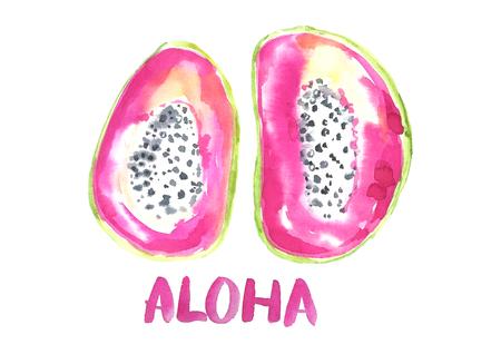 Watercolor exotic fruit.