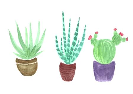 Watercolor three cactus botanical tree.