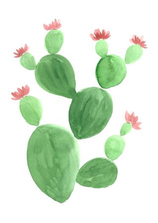 Watercolor cactus botanical tree.
