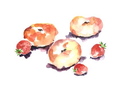 Watercolor peach and strawberry. Фото со стока