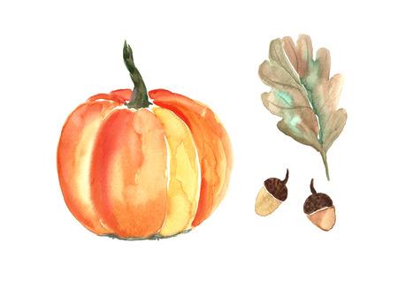 Watercolor pumpkin with oak leaf. Фото со стока