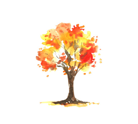 Watercolor autumn tree.