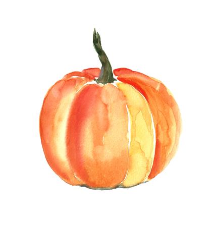 Watercolor pumpkin. Фото со стока