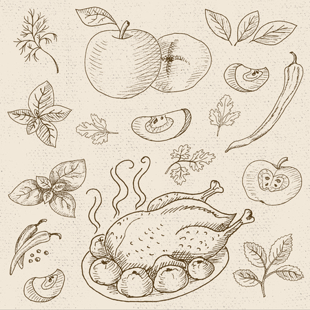 seasoned: Set of chalk sketch hand drawn, in sketch style, food and spices, old paper textured background. Roasted grill chicken seasoned with apples and spices. Chicken, apples, onion, pepper, tomato, cucumber, basil.