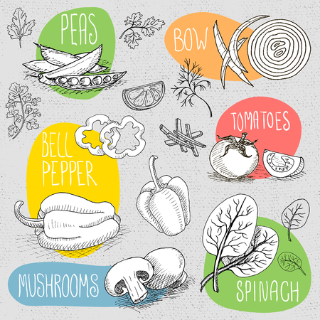 bell pepper: Set of stickers in sketch style, food and spices, old paper textured background. Mushrooms, bow, tomato, bell pepper, peas, spinach.