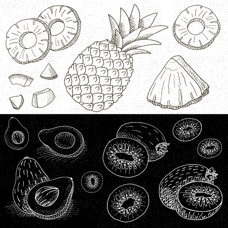 borscht: Set of chalk hand drawn, in sketch style, food and spices, black and white chalkboard background. Fruit set pineapple, kiwi, avocado, sliced. Hand drawn vector illustration. Illustration