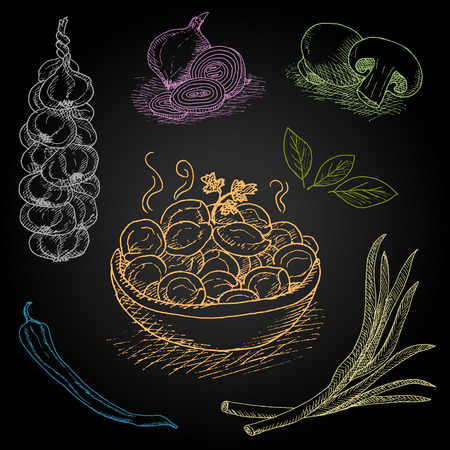 Set of color chalk drawn on a blackboard food, spices. Dumplings, onion, garlic, pepper, bay leaf, mushrooms. Hand drawn vector illustration.