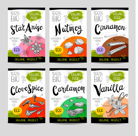 clove: Set of colorful stickers, sketch style food, spices Cinnamon, vanilla, cardamom, star anise, nutmeg, clove Spices, vegan food, organic product. Hand drawn vector illustration Illustration