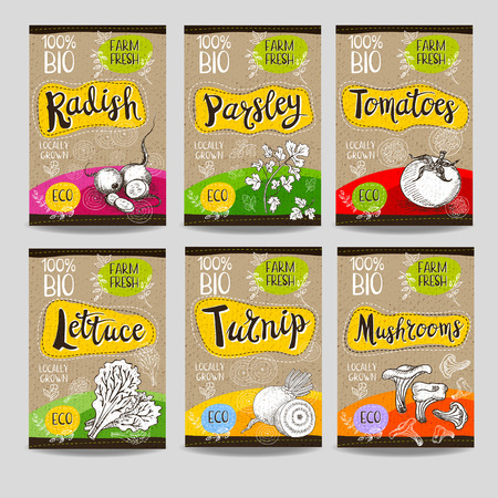 cardboard texture: Set of colorful labels, sketch style food spices, cardboard texture. Radish, parsley, tomatoes, lettuce, turnip, mushrooms. Vegetables farm fresh locally grown. Hand drawn vector illustration