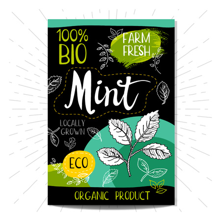 locally: Colorful label in sketch style food spices, black background. Mint. Vegetables. Bio, eco, farm, fresh. locally grown. Illustration